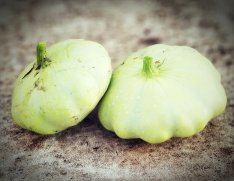 Green Scallop Squash